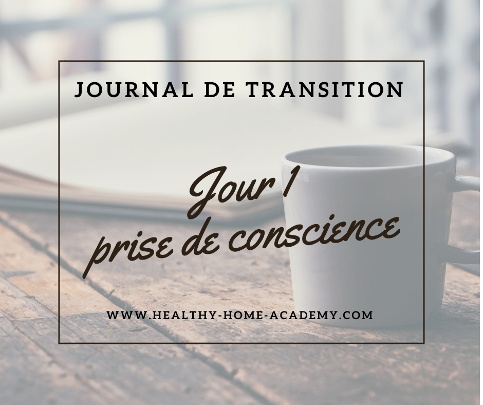 Journal de transition #1
