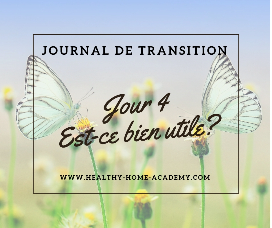 Journal de transition #4