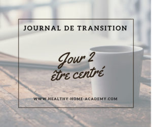Journal de transition #2